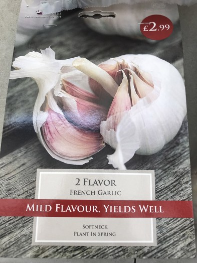 Garlic French Flavor x2 Bulbs