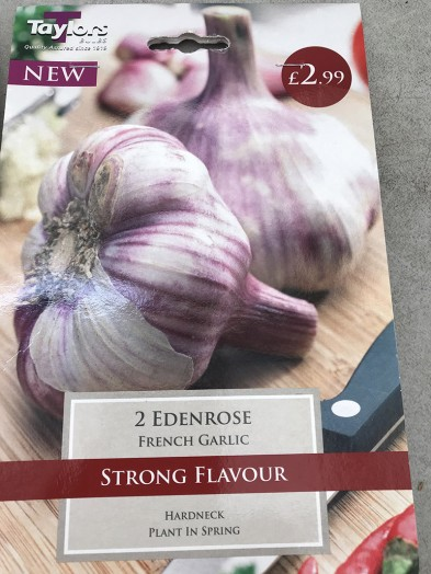 Garlic French Edenrose x2 Bulbs